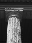 steers-column