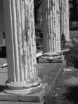 steers-columns